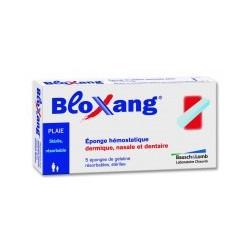 BLOXANG 5 éponges